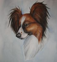 Papillon Portrait by Rabastan