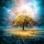 Moon Tree by Teodora-Chinde