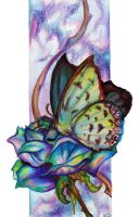 Butterfly for Suzie by sivvus