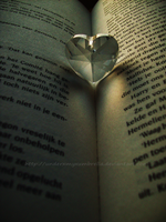 PHOTOGRAPHY: Heart Shaped by underxmyxumbrella