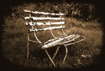 The lonely Bench by GingerPete