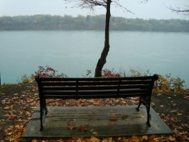 America From A Canadian Bench by Gr8-Gatensby
