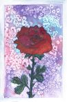 Red rose card by Wintella