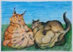 Fat lynx and jackal by SSsilver-c