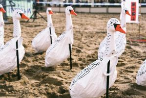 Geese on the beach by LTKJJ