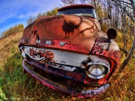 Bloody Nose by AgilePhotography