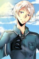 APH: Ore-sama by marialife