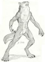 Werewolf Sketch by Earthsong9405