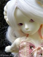 Ivory VI by Dynamene-Dolls