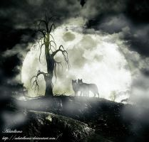Wolfs n Night by Adutelluma