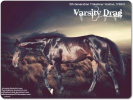 Varsity Drag by JuneButterfly-stock