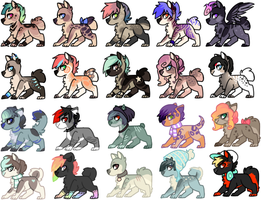 Cheap tiny adopts OPEN! by Keesness