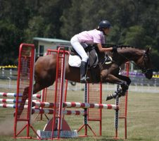 STOCK Showjumping 441 by aussiegal7
