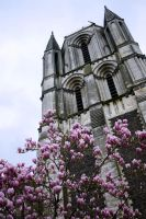 Church and flowers by annamarcella24