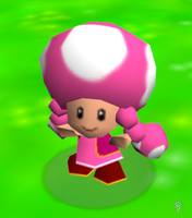 Toadette by Nelde