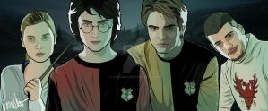 Triwizard Champs by verkoka