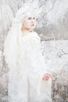 Snowqueen - Thus, My Kingdom may reign upon earth by May--Li