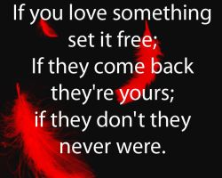 If you love it set if free by The-Quote