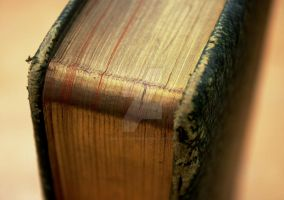 Gilded Pages by Emz-Photography