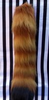 Ishaway's red panda tail front by fenrirschild