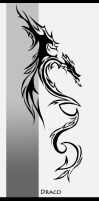 Dragon Tattoo by Startchless