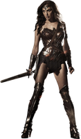 Gal Gadot (Wonder Woman) Render 1356x2319 by sachso74