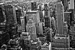 NYC BW by Solarstones