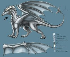 Crayder Realgar-character ref by silvermoonnw
