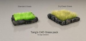 C4D Grass Pack by DudQuitter