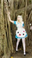 Alice in Wonderland by usagiyuu