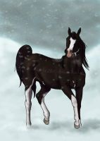 Prancing through the snow by scaramouche2802