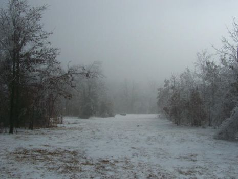 Foggy Winter106 by effing-stock