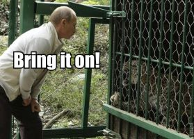 Putin Vs Leopard by vote-tennant