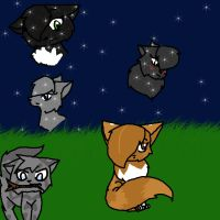 Thunder Clan med. Cats -New- by FieryTiger