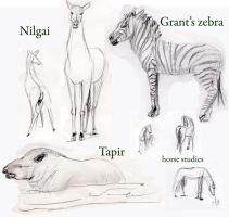 Hooved mammals and  tapir by 3Dasha