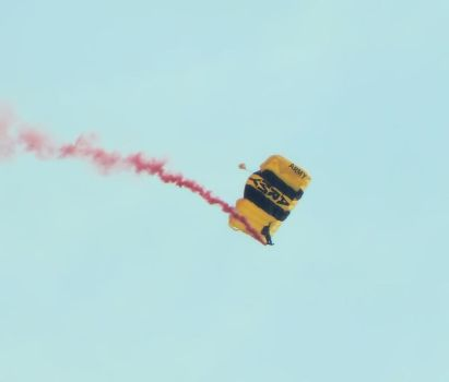 US Army Golden Knights by alucard07