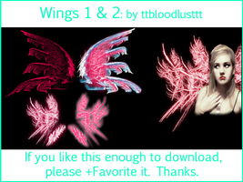 Wings Combined by ttbloodlusttt