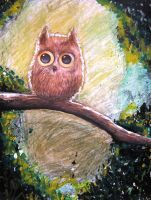 Owl by Bardsville