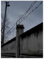 barbed-wire fence by flocska