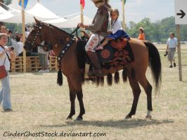 Hungarian Festival Stock 096 by CinderGhostStock