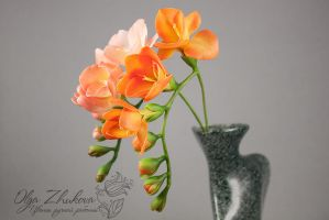 freesia by polyflowers