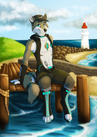 The Coast by Silvixen