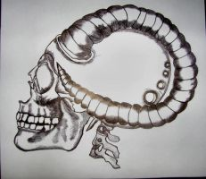 Aries skull by santiims