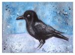 ACEO For Jekkuilija - Crow by Paintwick