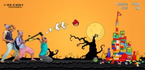 Angry birds by DRSHOT