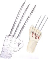 Wolverine by ravenclaw42
