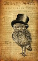 Ernest the Gentleman Owl by monkey-sox