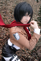 Mikasa Ackerman - the red string of fate by Mizukishou
