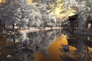 AUBURN REFLECTIONS by EdwinMartinez