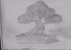 Bonsai Tree by ADE-Syndicate